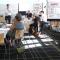 Introduktionskursus til facilitering og grafisk facilitering